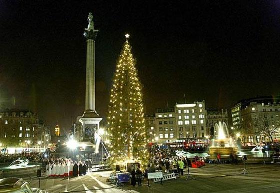 Новогодняя елка на Трафальгарской площади.